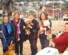 SUBDERE APRUEBA RECURSOS PARA EJECUTAR PLAN DE ESTERILIZACIÓN DE MASCOTAS EN PELLUHUE
